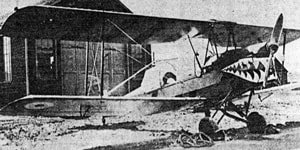 "DH-82C 5014 as the fierce looking VG-TFA of Fleet Requirements Unit 743.Although the image is of less than desireable quality, it does illustrate the aircraft's unusual wing and fuselage stripes, large sharmouth, and ""26"" tail number."